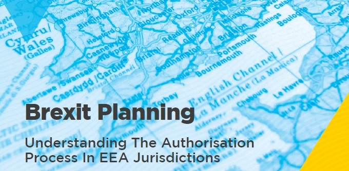 Brexit Planning Ebook Cover Feb 2019-1